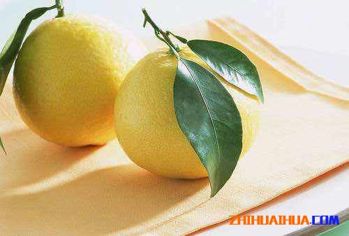 怀化安江香柚