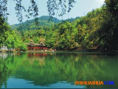 中坡森林公园