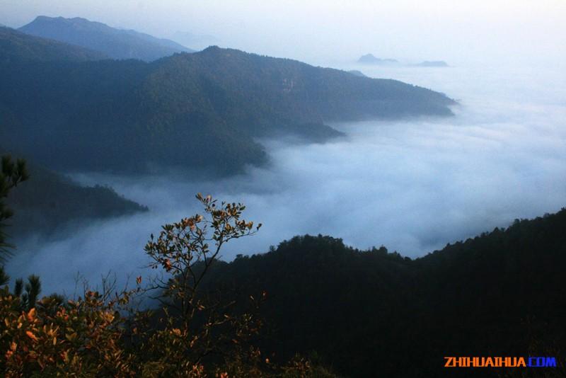 湖南会同鹰嘴界国家级自然保护区