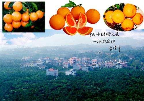 怀化市的新麻阳县有哪些好玩的地方?景点美食,吃喝玩乐这里很全了!