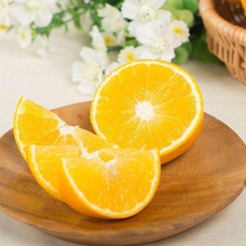 靖州冰糖橙