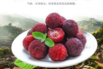 靖州杨梅酒