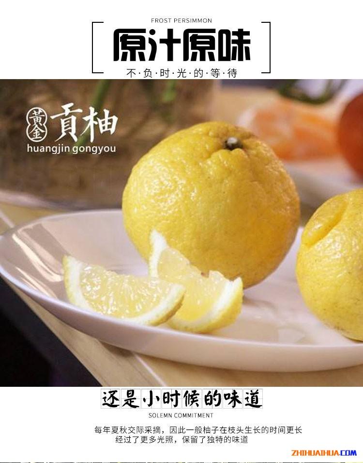 洪江雪峰山黄金贡柚