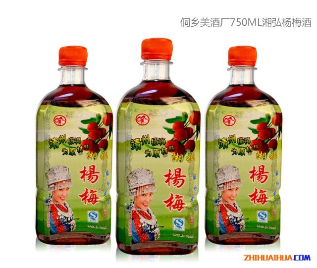 靖州特产杨梅酒
