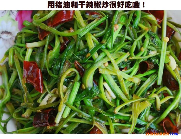 怀化大叶山芹菜鸭脚板野菜
